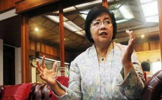 Menteri Siti Bakal Setop Tambang Ilegal di Sekitar IKN - JPNN.com