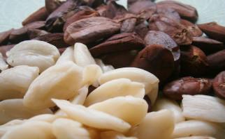 Konsumsi 30 Gram Kacang Sehari Bisa Menjaga Kesehatan Jantung - JPNN.com