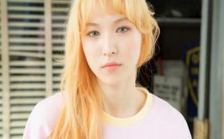 Wendy Red Velvet Bakal Berkolaborasi dengan John Legend - JPNN.com