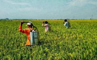 Peran P3A dalam Penyediaan Air Irigasi Pertanian Terus Ditingkatkan - JPNN.com