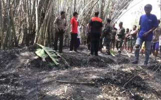 Nenek Sebatang Kara itu Terbakar di Tengah Kebun - JPNN.com
