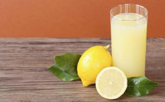 Ketahui Sederet Khasiat Air Lemon bagi Kesehatan - JPNN.com