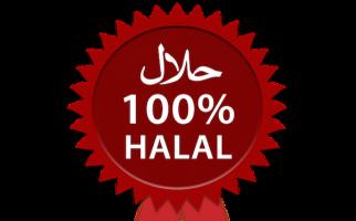 PP 31 Tahun 2019: Peran MUI di Penerbitan Sertifikat Halal Tetap Sentral - JPNN.com