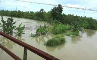Banjir di Ngawi, Petani Merugi hingga Rp 33 Miliar - JPNN.com