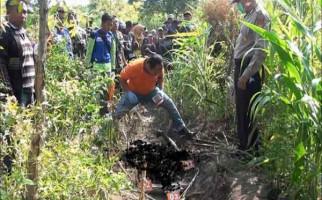 Mayat Perempuan Misterius Ditemukan Terbakar di Kebun Jagung, Siapa Dia ? - JPNN.com