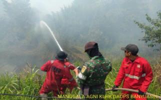 Perusahaan Asal Negara Tetangga Terlibat Karhutla Disegel Kementerian LHK - JPNN.com