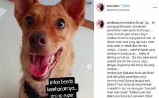 Anjing Mati Ditembak OTK Secara Brutal, Polisi Turun Tangan - JPNN.com