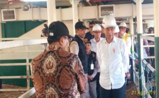 Kementan: Kunjungan Jokowi Membuktikan Dukungan terhadap Kemajuan Peternakan - JPNN.com