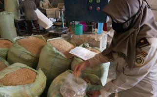 Tongkol Jagung Sumatera Utara Diminati Pasar Jepang - JPNN.com
