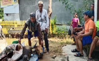 Sadis, Dua Korban Mutilasi Hanya Tinggal Kepala dan Satu Paha - JPNN.com