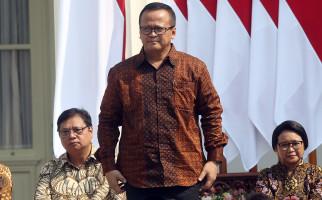 Simak nih, Hitung-hitungan Menteri Edhy soal Dampak Lingkungan Ekspor Benih Lobster - JPNN.com
