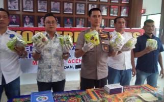 Kurir Narkoba Aceh-Medan Ditembak Mati di Pintu Tol Helvetia - JPNN.com
