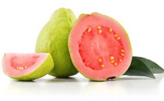 Makanan Ini Efektif Meingkatkan Sistem Kekebalan Tubuh - JPNN.com