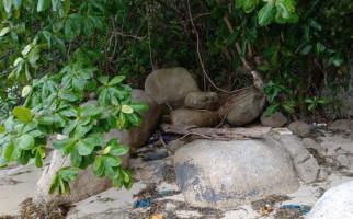 Tengkorak dan Tulang Belulang Manusia Ditemukan di Pesisir Bintan - JPNN.com