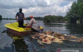 Kapolda Sumut Pastikan Bentuk Tim Khusus Tangani Kolera Babi - JPNN.com