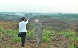 Harapan Kadin untuk Proyek Ibu Kota Negara, Pak Jokowi, Mohon Dengarkan - JPNN.com