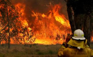 F1 Galang Dana untuk Korban Kebakaran Hutan Australia - JPNN.com