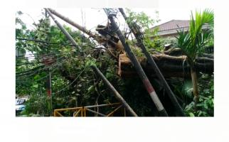 Pohon Tumbang Timpa Tiang Listrik di Kompleks Rumah Mewah Menteng Jakarta - JPNN.com