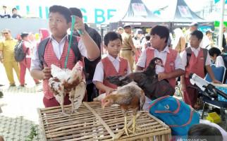 Program Bagi-bagi Anak Ayam ke Pelajar Bakal Dilanjutkan - JPNN.com