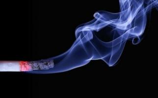 Mantap! Mensos Usul Harga Rokok per Bungkus Rp 100 Ribu - JPNN.com
