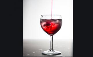 Berapa Batas Aman Minum Sirop Saat Berbuka Puasa? - JPNN.com
