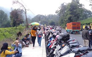 Mau ke Puncak Bogor? Siap-siap Saja - JPNN.com