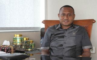 Perihal Calon Duta Besar, DPR: Keterwakilan Orang Asli Papua Harus Jadi Perhatian Presiden - JPNN.com
