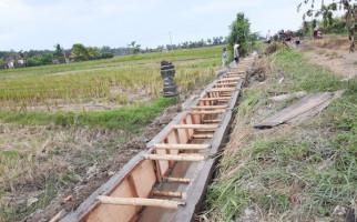 Dapat Bantuan RJIT, Petani Mojokerto Siap Hadapi Musim Tanam II - JPNN.com