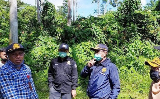 Bea Cukai Merauke Ikut Patroli di Jalur Perbatasan Indonesia-PNG - JPNN.com