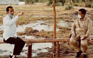 Ternyata Ini Alasan Jokowi Beri Tugas Istimewa kepada Prabowo di Kalimantan - JPNN.com