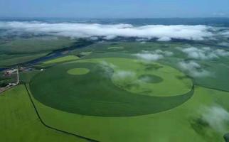 Luar Biasa, Ladang Gandum di Tiongkok Pecahkan Rekor Dunia - JPNN.com