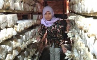 Seorang Guru Beralih jadi Pengusaha Jamur Tiram di Semarang, Begini Kisahnya - JPNN.com