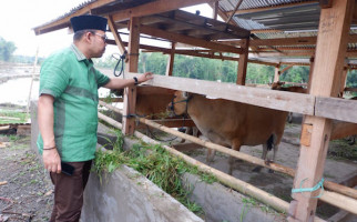 Andi Akmal DPR Pantau Realisasi Pelaksanaan Kegiatn UPPO di Bulukumba - JPNN.com