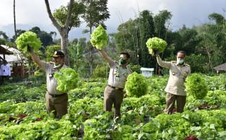 Hari Pangan Sedunia 2020, Petani Muda dan Kementan Serukan Gerakan Berkebun - JPNN.com