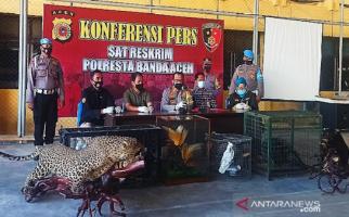 Sejumlah Satwa Dilindungi Ditemukan di Rumah Bandar Narkoba, Kondisinya… - JPNN.com