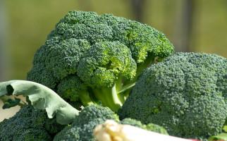 Ini Lho Efek Samping Konsumsi Brokoli Mentah - JPNN.com