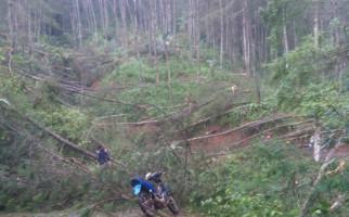 Puluhan Pohon Tumbang, 3 Desa di Cianjur Terasing - JPNN.com