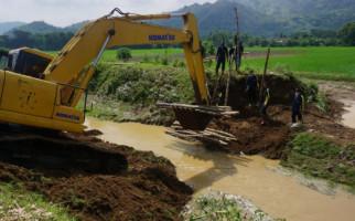 Banjir Tak Kunjung Surut, Distan Tulungagung: 116 Hektare Sawah Dipastikan Puso - JPNN.com