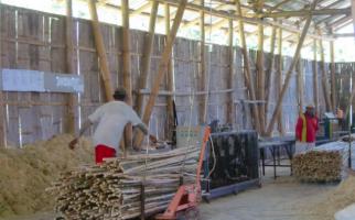 KLHK: Bambu Penggerak Ekonomi dan Peningkatan Kualitas Lingkungan Hidup - JPNN.com