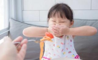 Oooo..., Ternyata ini Penyebab Anak Susah Makan - JPNN.com