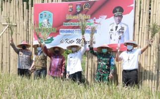 Mendagri Tito Sampai Turun ke Sawah Melihat Gagasan Irjen Iqbal - JPNN.com