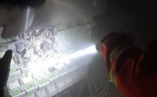 Kebakaran Hanguskan Gardu PLN di Tebet - JPNN.com