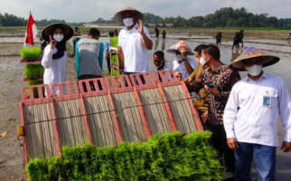 Hasil Produktivitas Tanaman Petani Meningkat, Pupuk Indonesia Perluas Program Agro Solution - JPNN.com