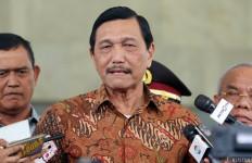 Pak Luhut Geregetan, Gantungan Pakaian pun Impor ke Indonesia - JPNN.com