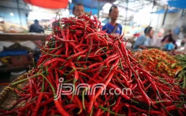 Kabar Baik Bagi Penyuka Makanan Pedas - JPNN.com