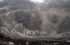 Curigai Freeport Sembunyikan Mineral Khusus dari Papua - JPNN.com