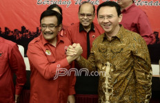 Ahok-Djarot Menang Pilkada DKI Jakarta 2017 Putaran 1 - JPNN.com
