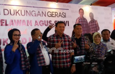 Kader PD Kemarin Pilih AHY, tapi Kini Dukung Ahok Saja - JPNN.com