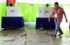 Bawaslu: Politik Uang Dilakukan Relawan Tak Resmi - JPNN.com