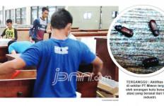 Sebarkan Bau dan Kutu Busuk, PT Miwon Diprotes Warga - JPNN.com